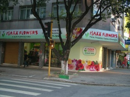 Floricultura Maxx Flowers